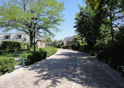 Hollanderwijk - Eindbeeld - Hollanderstraat