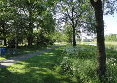 Kalverdijkje Noord - Beeld wandelpad